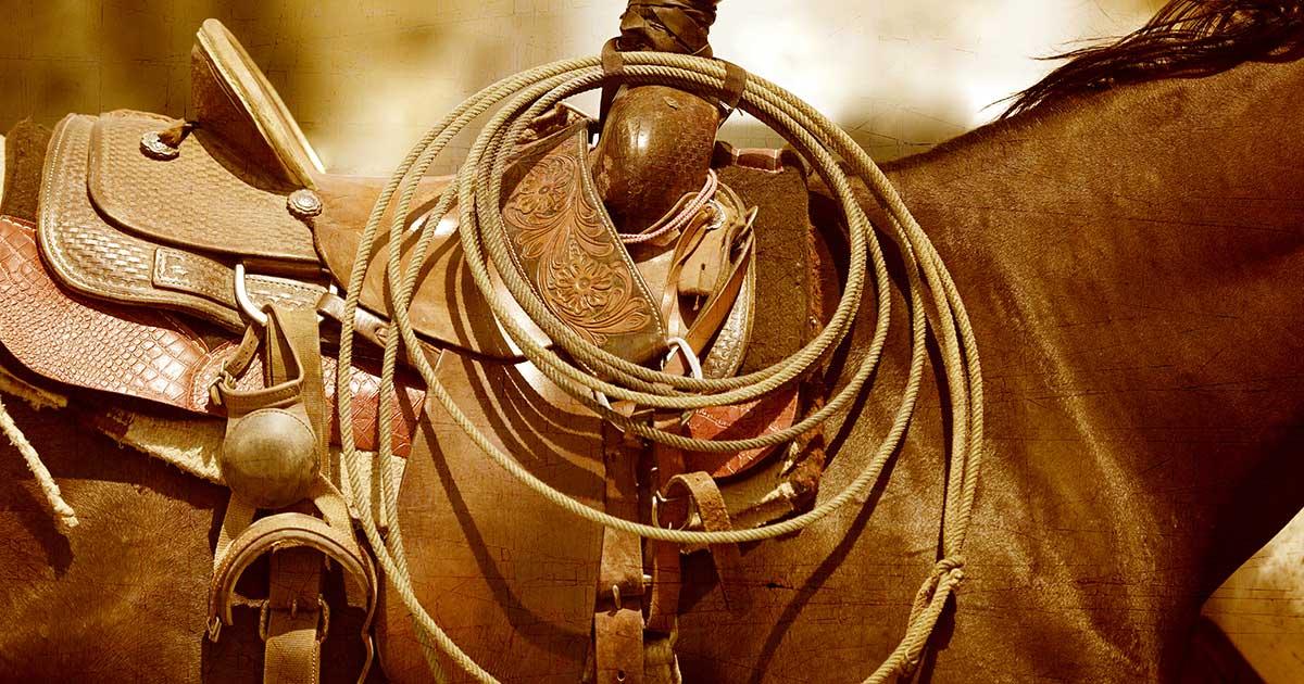 Storytelling e selle per cavalli